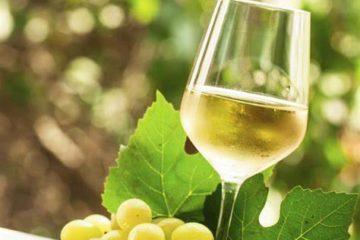 wine review summer breeze